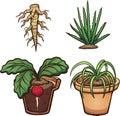 Cartoon plants