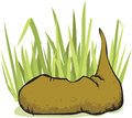Cartoon poop in the grass illustration of a that has been left behind a field Stock Image