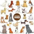 Cartoon purebred dog characters large set