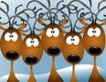 Cartoon Reindeer Christmas Card