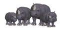 Cartoon rhino family Royalty Free Stock Photo