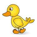 Cartoon of a rubber duck Royalty Free Stock Photos