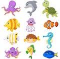 Cartoon sea life collection