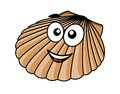 Cartoon seashell with a happy smile and the fan shaped shell of typical mollusk vector illustration on white Stock Photo