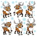 Cartoon set of Christmas reindeer Royalty Free Stock Photo