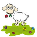 Cartoon sheep,  lamb Stock Photos