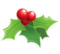Cartoon shiny christmas holly decorative ornament mistletoe red and green Stock Photo