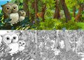 Cartoon sketch scene with owls in the forest illustration