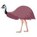 Cartoon smiling Emu