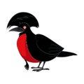 Cartoon smiling umbrellabird