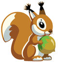 Cartoon squirrel holding nut image isolated on white background Stock Image