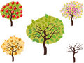 Cartoon style of seasonal trees Royalty Free Stock Photo