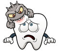 Cartoon tooth vector illustration of Royalty Free Stock Images