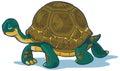 Návrh maľby korytnačka