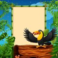 Cartoon toucan presenting on hollow log near the empty framed signboard