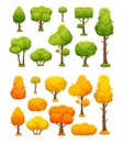 Cartoon tree. Cute wood plants and bushes. Green and yellow autumn trees vector landscape elements