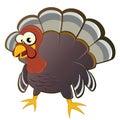 Cartoon turkey