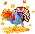 Cartoon Turkey with autumn bouquet Stock Photos