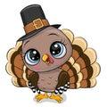 Cartoon turkey bird isolated on a white background