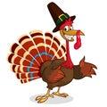 Cartoon turkey in pilgrim hat. Thanksgiving vector illustration isolated on white background