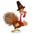 Cartoon turkey in pilgrim hat. Thanksgiving vector illustration isolated on white background.