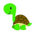 Cartoon turtle Royalty Free Stock Image