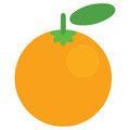 Cartoon vector graphic juicy orange fruit isolated in white back Royalty Free Stock Photo