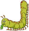 Cartoon caterpillar insect animal character Royalty Free Stock Photo