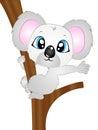 Cartoon Vector Koala Bear on Tree