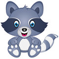 Cartoon Vector Raccoon Illustr...