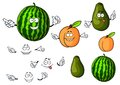 Cartoon watermelon avocado and apricot fruits fresh green knobbly orange fuzzy characters for agriculture or vegetarian food Stock Photo