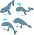 Cartoon whale Royalty Free Stock Photo