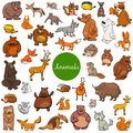 Cartoon wild animal characters big set Royalty Free Stock Photo