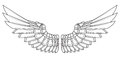 Cartoon wings in black and white