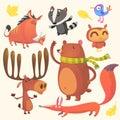 Cartoon woodland animals set. Vector illustration of boar, badger, blue bird, elk moose, bear, owl and fox
