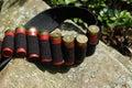Cartridge Belt Royalty Free Stock Photo