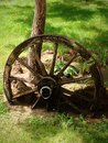 Cartwheel old in the garden Royalty Free Stock Photography