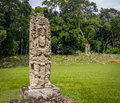 Carved Stella in Mayan Ruins - Copan Archaeological Site, Honduras Royalty Free Stock Photo