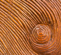 Carved Whirlpool on Wood Texture Background Royalty Free Stock Photo