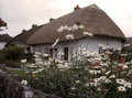 Casa de campo Thatched, adare ireland Imagem de Stock Royalty Free
