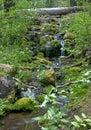 Cascada minúscula en bosque en HDR Imagen de archivo libre de regalías
