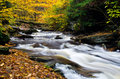 Cascade deep in the autumn forest a flowing Stock Photo