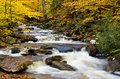 Cascade deep in the autumn forest a flowing Royalty Free Stock Photo