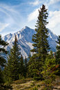 Cascade Mountain Stock Image