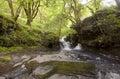Cascade through the Park. Royalty Free Stock Photo