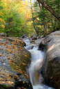 Cascade river flow with fall foliage Royalty Free Stock Image