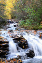 Cascade river flow with fall foliage Royalty Free Stock Images