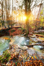 Cascade river mountain in a forest in autumn Royalty Free Stock Image