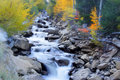 Cascade water falls scenic in colordo Royalty Free Stock Photography