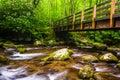Cascades and walking bridge over the Oconaluftee River